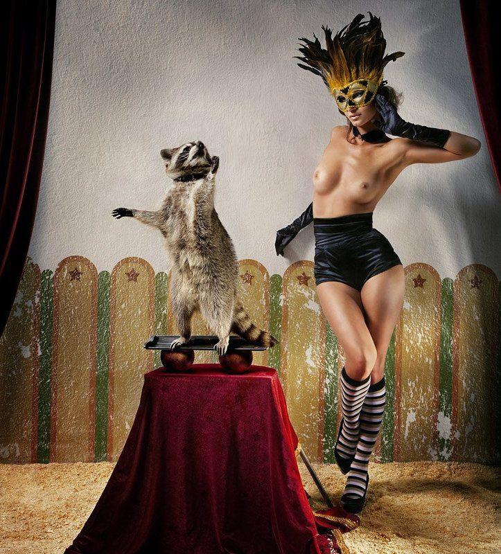 Цирк 2010photo preview