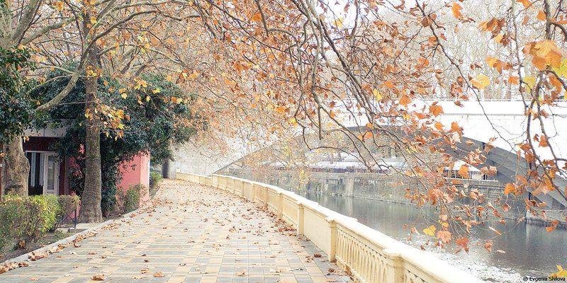 Зима в Сочиphoto preview