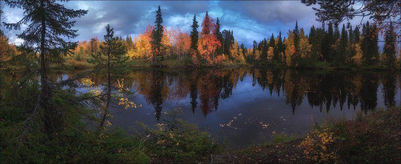 золотая осень, карелияосень Карельский мотивphoto preview