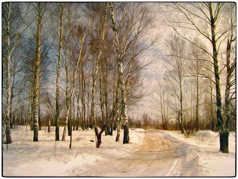 арт фото, березы, живопись, зимний пейзаж, картина маслом, пейзаж, плагин топаз, стилизация, фотошоп свет берёзphoto preview