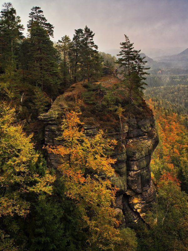 Осень пришлаphoto preview