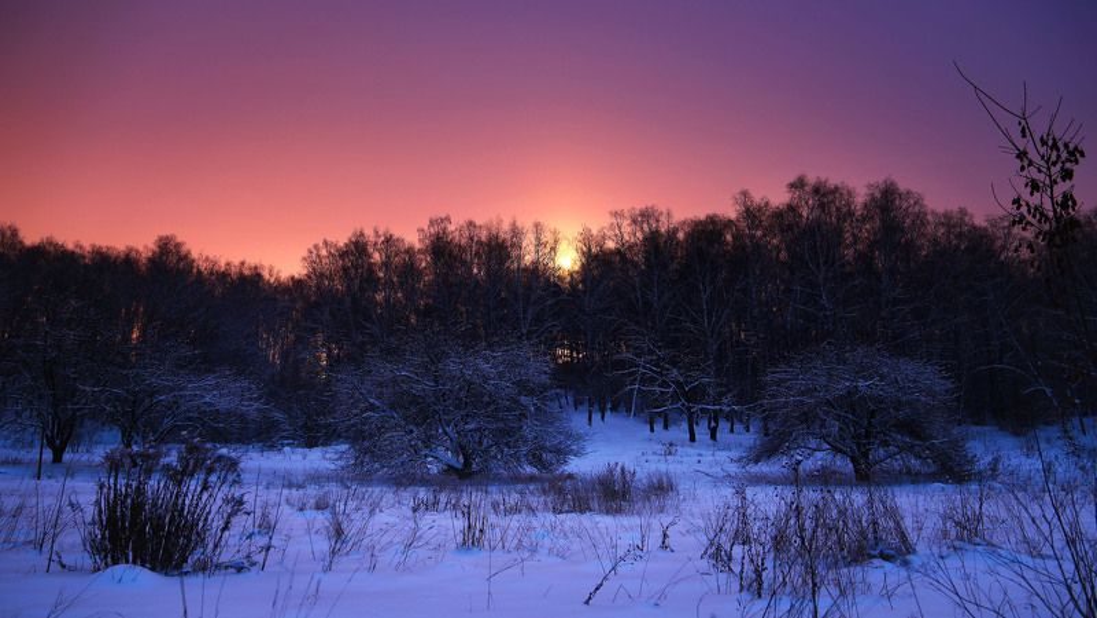 Зима, Луна, Ночной пейзаж, Ночь, Снег Ночной пейзажphoto preview