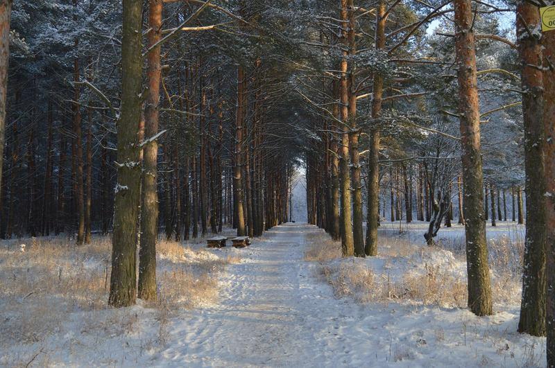 Natalya, Estonia