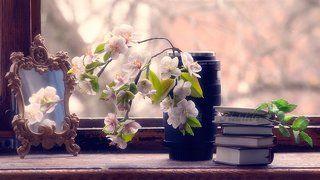 В ожидании весны...