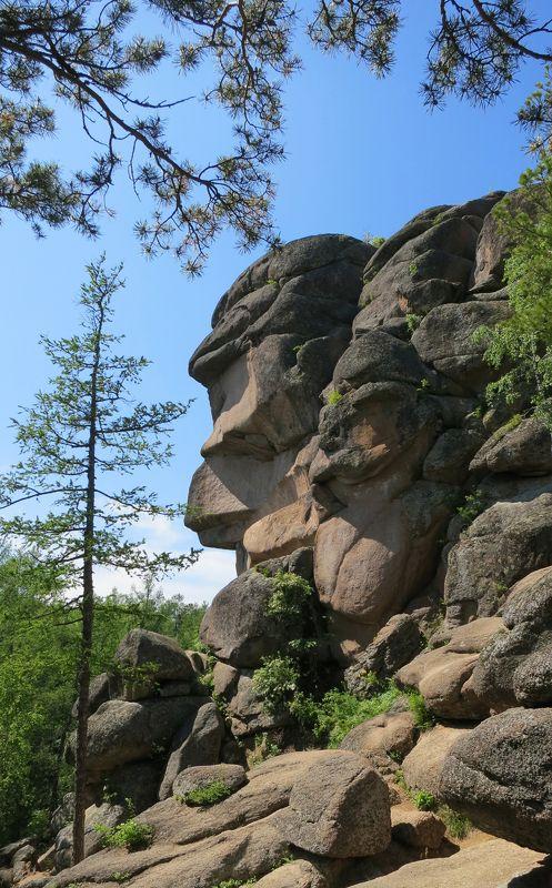 Sveta, Russia