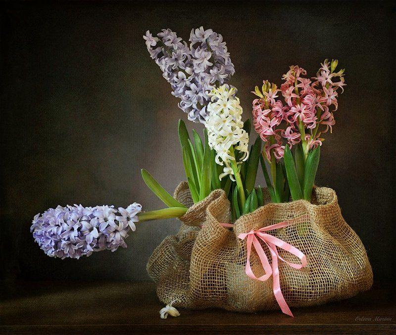 Скоро весна...photo preview