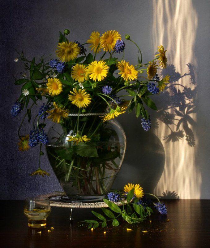 Весна, Вечер, Натюрморт, Фотонатюрморт, Цветы photo preview