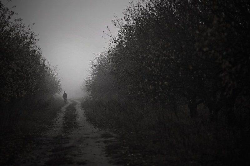 туман, яблоневый, сад, мужчина, одиночество туманphoto preview