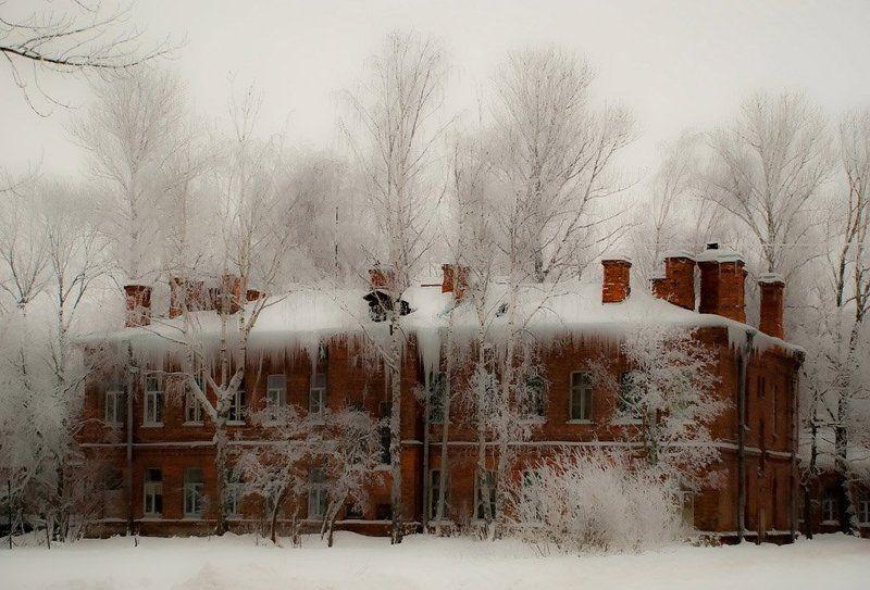 архитектура, город ,  деревья, дома,  зима, конкурс,  памятники, пейзаж, петергоф, петродворец, природа Зима в городкеphoto preview