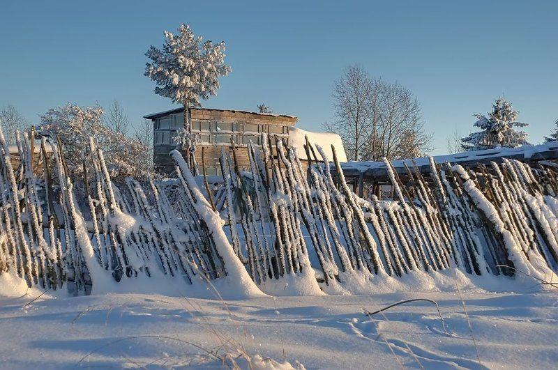 hdr, дача, деревня, деревья,  забор, зима, огород, пейзаж, природа, снег, январь Зимой на фазендеphoto preview