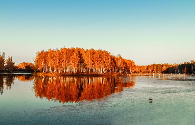 Артем, Russia