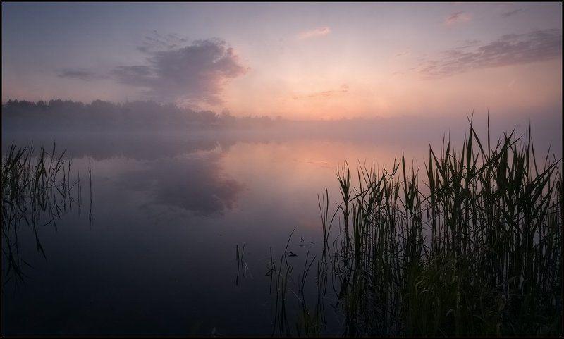 утро нового дняphoto preview