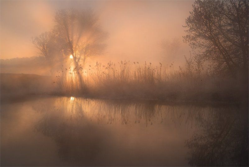 sony, весна, лучи, река, солнце, туман, утро Рассветнаяphoto preview