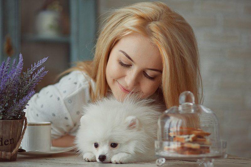 собака, утро, девушка, кофе завтракphoto preview