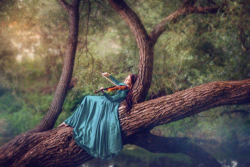 музыка скрипка девушка дерево Музыка летнего вечераphoto preview