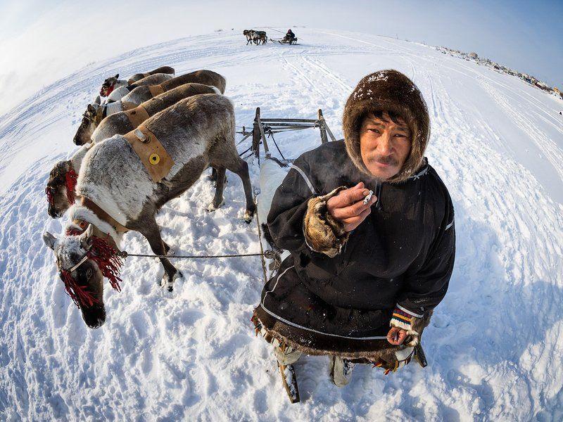 Россия, Сибирь, Ямал Планета Ямалphoto preview