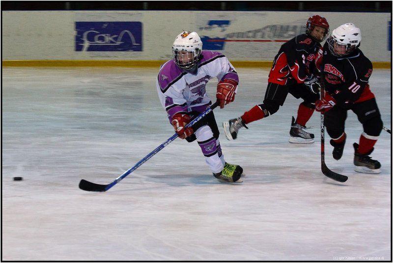 хоккей, спорт В хокей играют настоящие мужчиныphoto preview