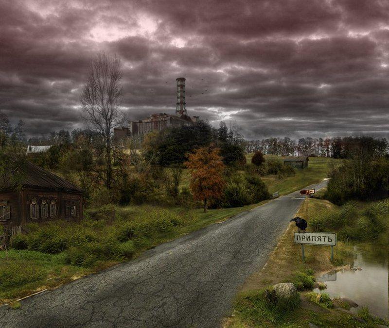 Дорога на Припятьphoto preview