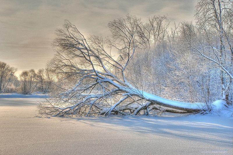 Зимняя фантазияphoto preview