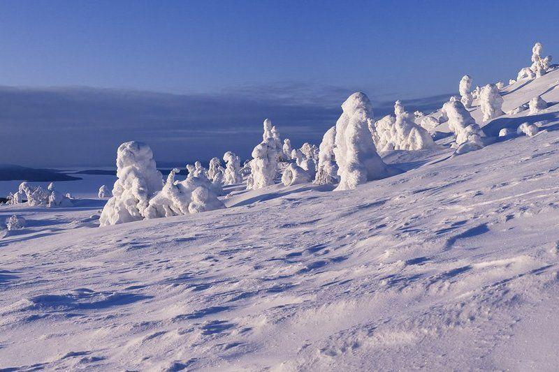 пейзаж,зима,вечер Город снежных скульптурphoto preview