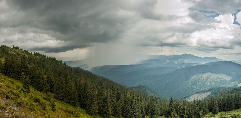 Карпаты горы лес ***photo preview