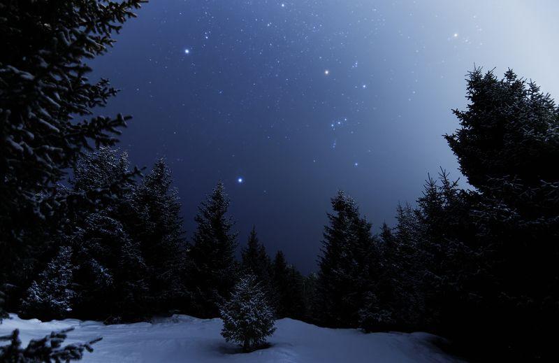 ночь, звезды, ночной пейзаж, каракол, киргизия Ночная сказкаphoto preview