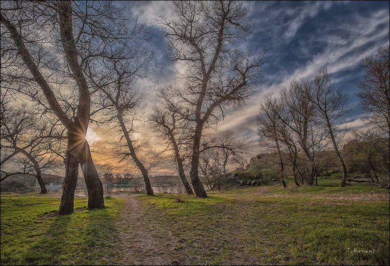 весна,река,вечер *photo preview
