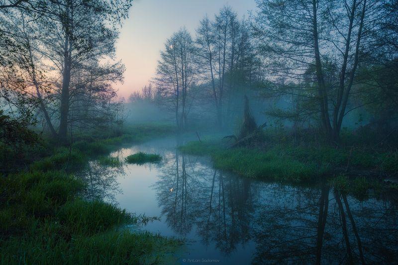 Идолга, Пейзаж, Река, Саратов, Туман, Утро Утро на малой Идолгеphoto preview