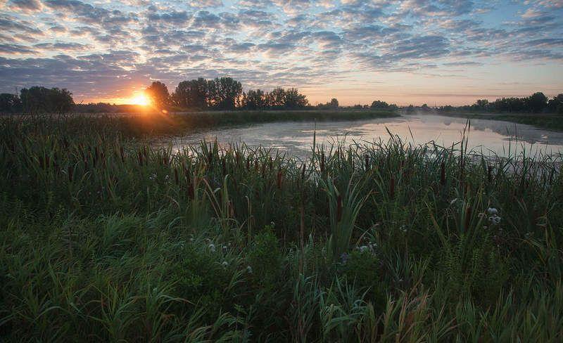 Утром на озереphoto preview