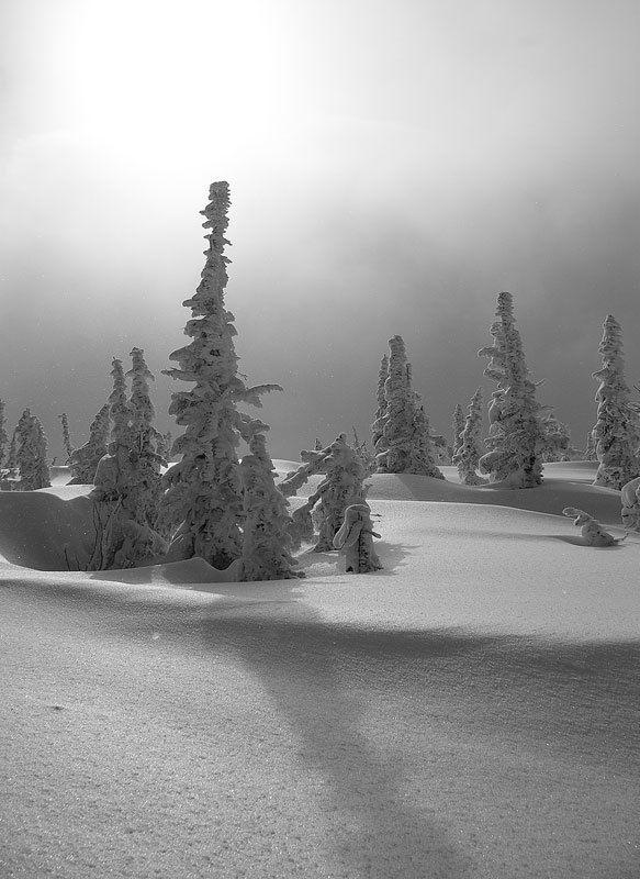 зима, горы в снегахphoto preview