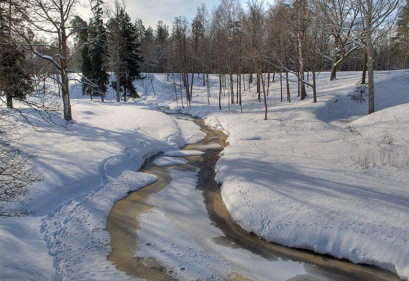 Снежные берегаphoto preview