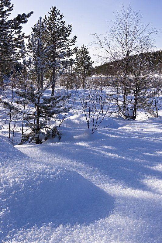 пейзаж,весна,север Солнечно.....Мартовский этюдик.photo preview