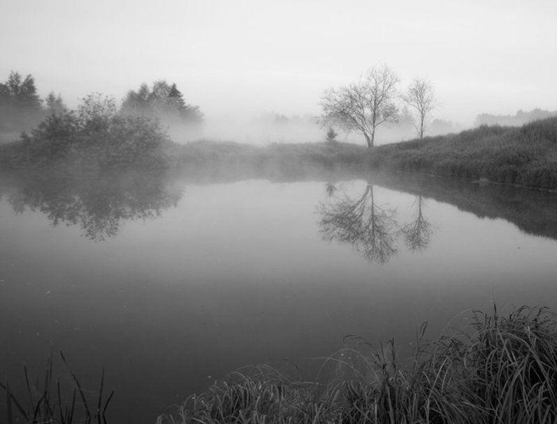 утро туман &**photo preview