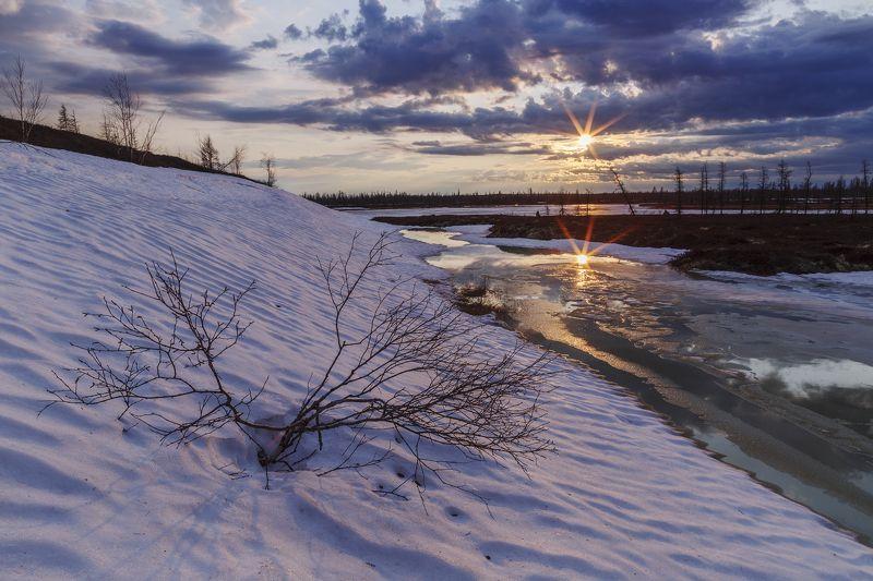 ямал, закат, пейзаж, арктика, тундра, весна, новыйуренгой, canon Весна в Арктике фото превью