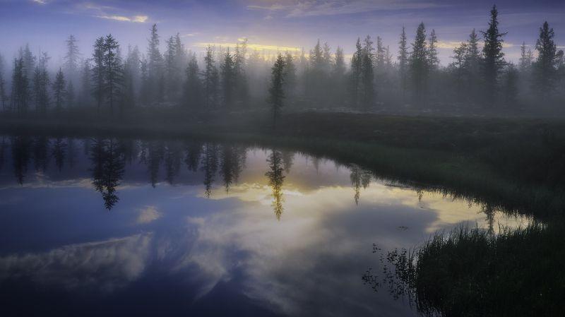 ямал, тундра, рассвет, туман, лес, отражение, canon, пейзаж Таёжное утро фото превью