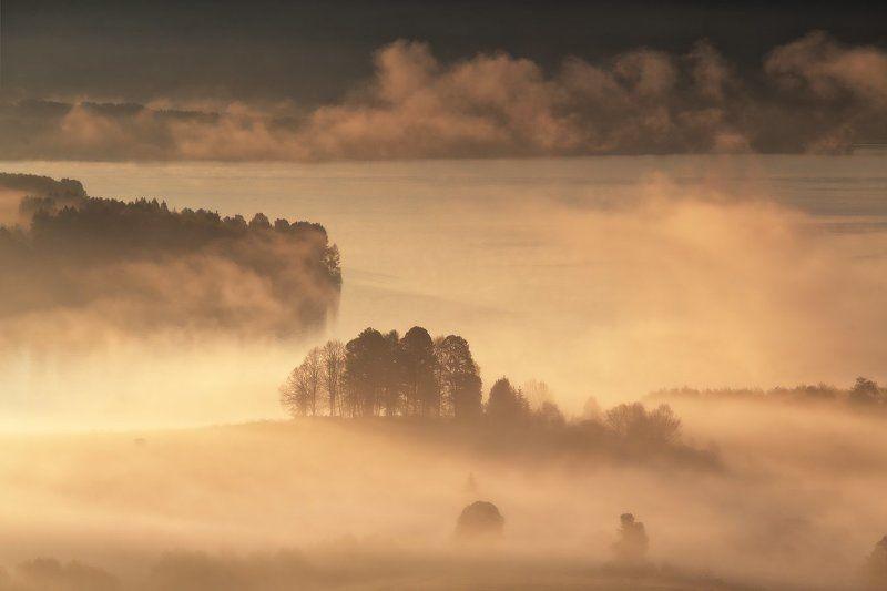 Многоплановость туманного утраphoto preview