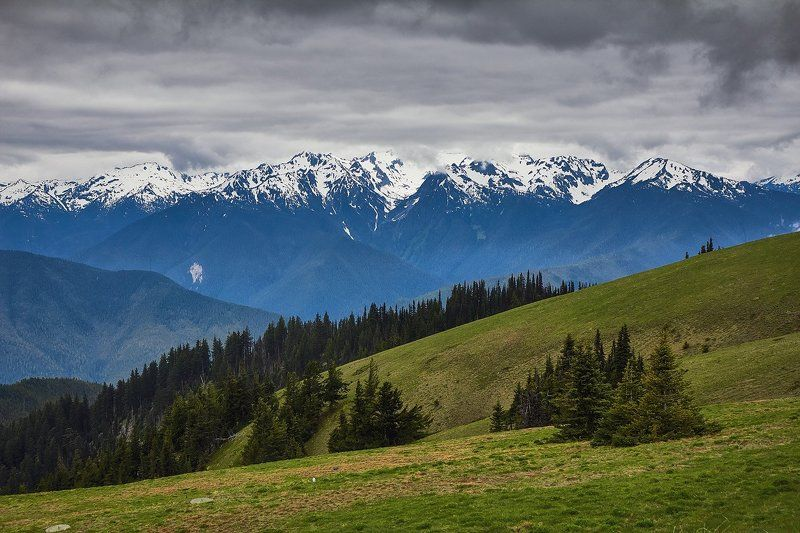 Hurricane Ridge, Mountains, Olympic Hurricane Ridgephoto preview