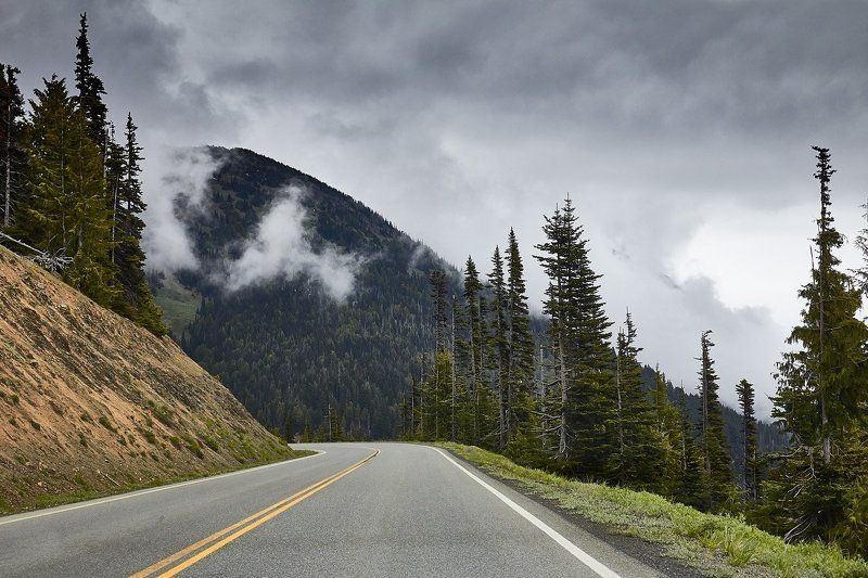 Clouds, Hurricane Ridge, Mountains, Olympic National Park, Road Mountain Road in Cloudsphoto preview