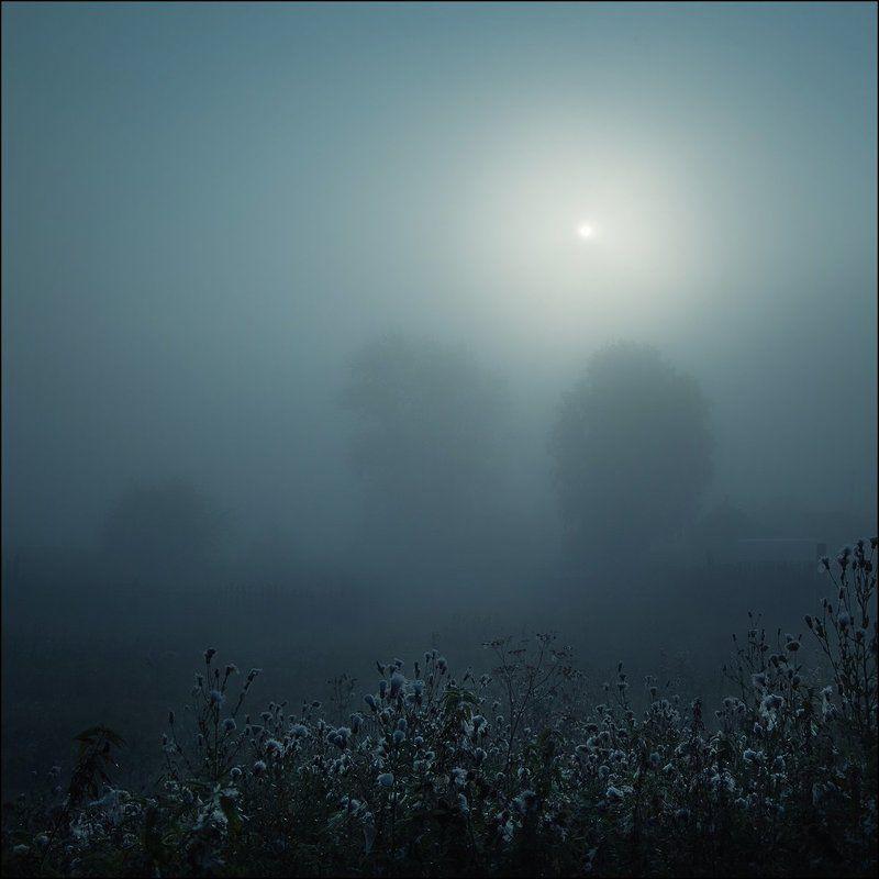 Туман, Утро Тихое утроphoto preview