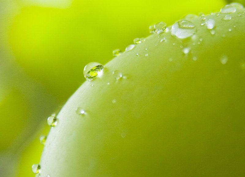 яблоко, капли, макро Яблокоphoto preview