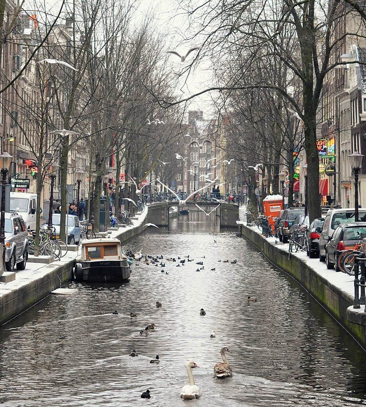 амстердам Амстерphoto preview