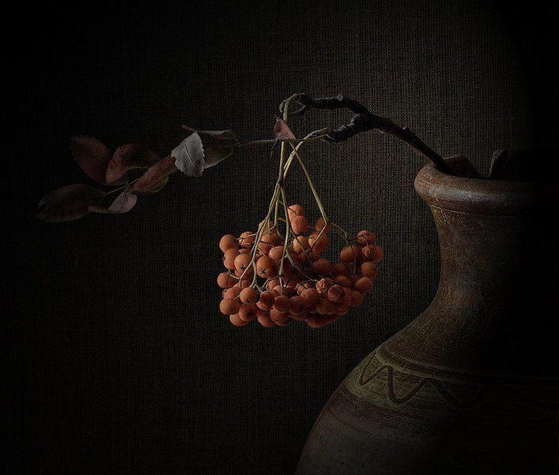 рябина, осень, фрагмент рябинаphoto preview