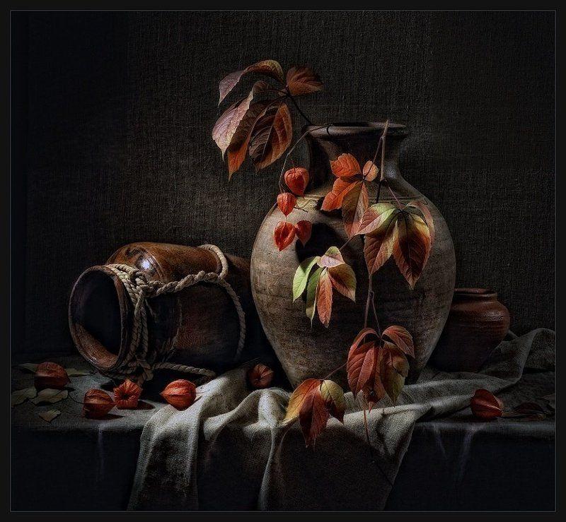 осень, виноградная ветка осеннийphoto preview