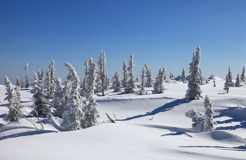 зима, горы, шерегеш ***photo preview