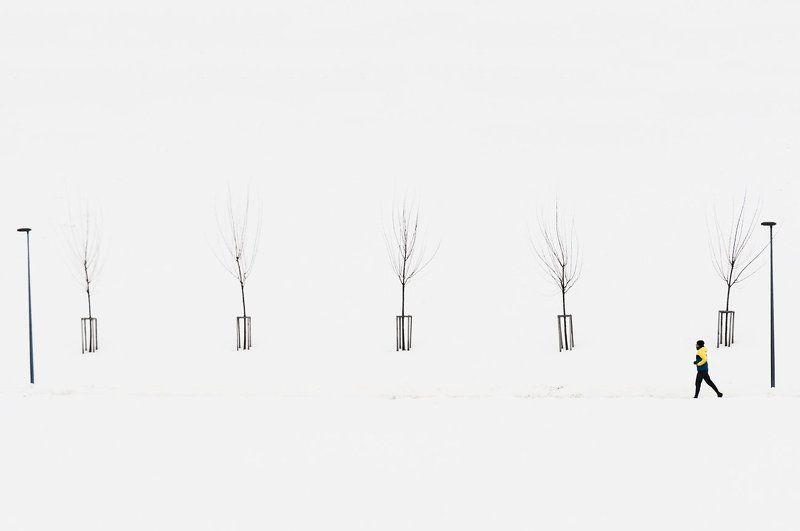 Деревья, Зима, Человек   * photo preview