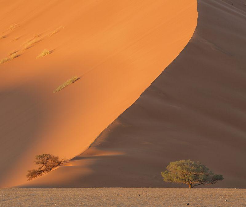 namibia, намибия, #loveafrica, sossusvlei, dunesnamib-naukluft national park, sesriem, mc #loveafricaphoto preview