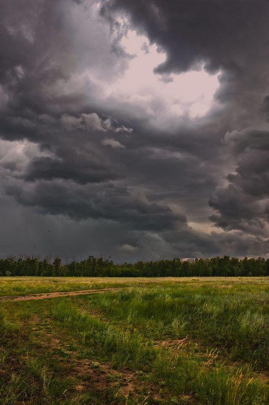 Небо, Степь, Тучи Небесные драмыphoto preview