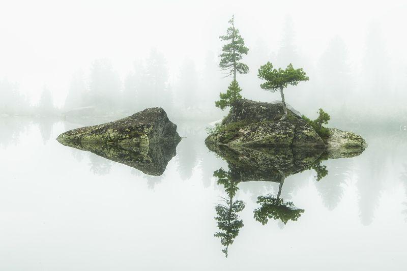 ергаки, пейзаж, отражение, туман, кедр, сибирь, саяны Симметрияphoto preview