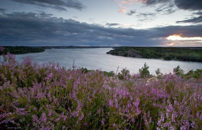 patryk, ignacak, stockholm, sweden, landscape, sunset, Windy Landphoto preview