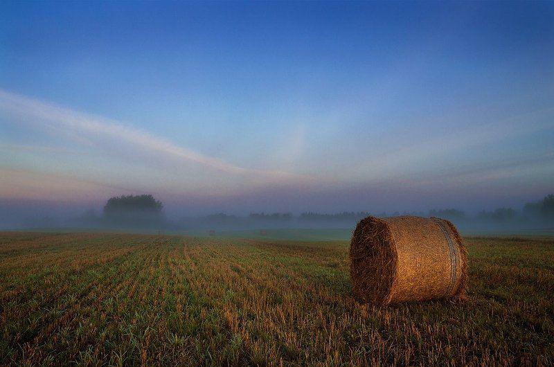 Clouds, Field, Fog, Forest, Mist, Sky Summer endsphoto preview